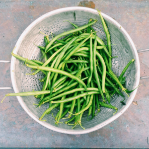 Is Weekly Meal Prep For You? Why Meal Prepping Simply Works: green beans: No More Excuses Fitness Training: www.nmefitnesstraining.com